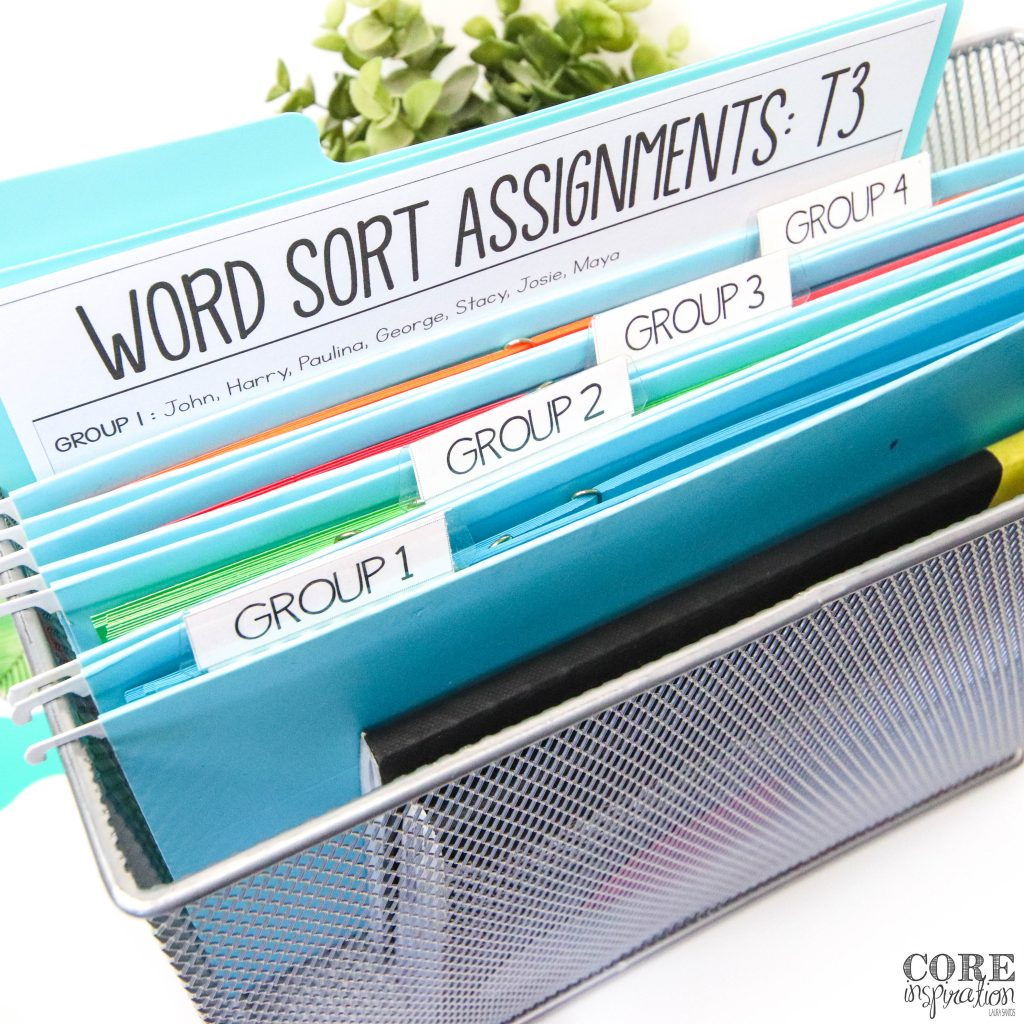 Metal file bin with group 1, 2, 3, and 4 files containing differentiated word word sorts copied on different colors of paper.
