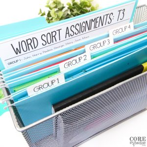 Metal file bin with group 1, 2, 3, and 4 files containing different word sorts copied on different colors of paper.